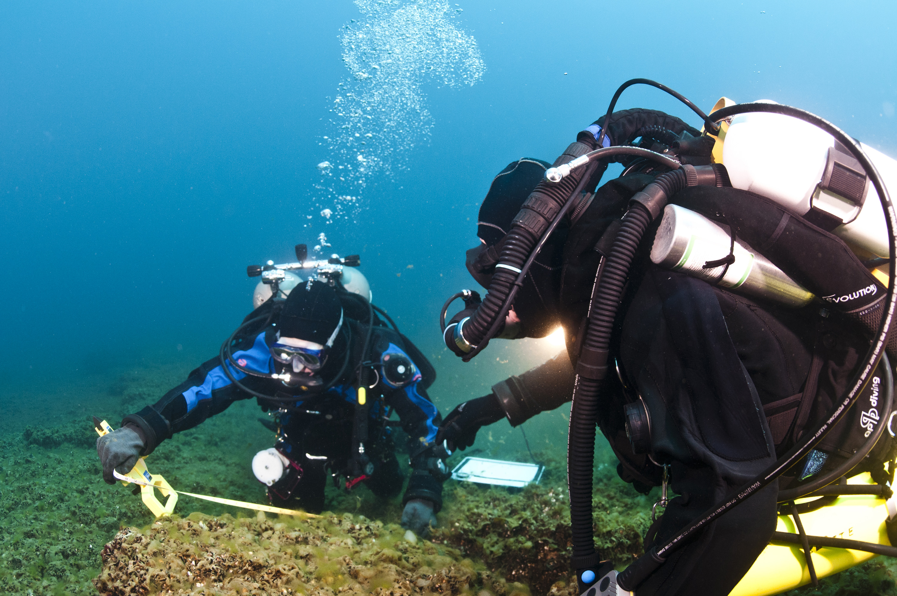 Divers tagging and measuring boulders. Photo courtesy of Tane Casserley, NOAA Thunder Bay National Marine Sanctuary