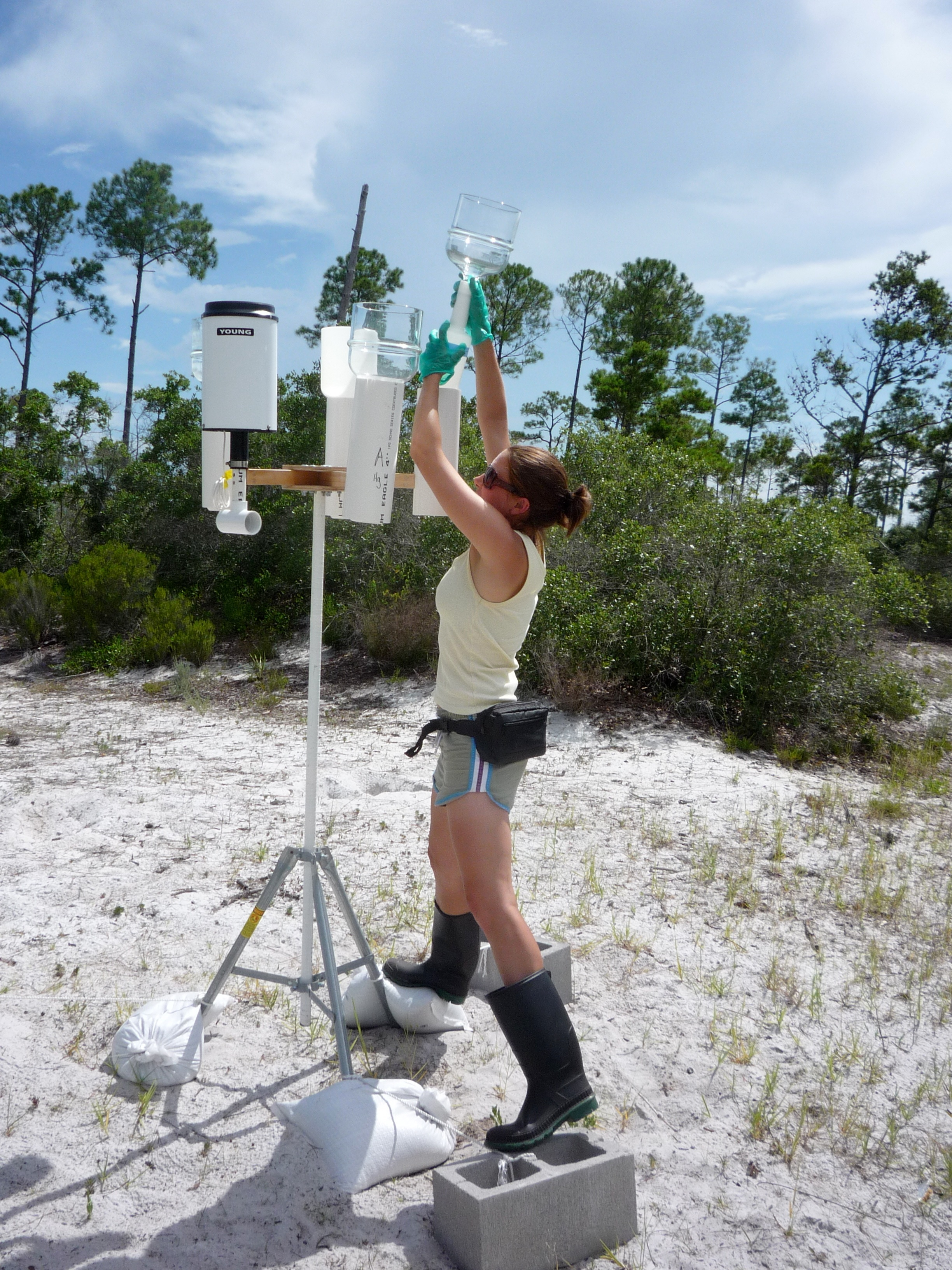 Laura Sherman collecting a precipitation sample at a study site in Florida.  Sampling tripod includes funnels to collect precipitation and a tipping bucket rain gauge. Photo courtesy of James Barres
