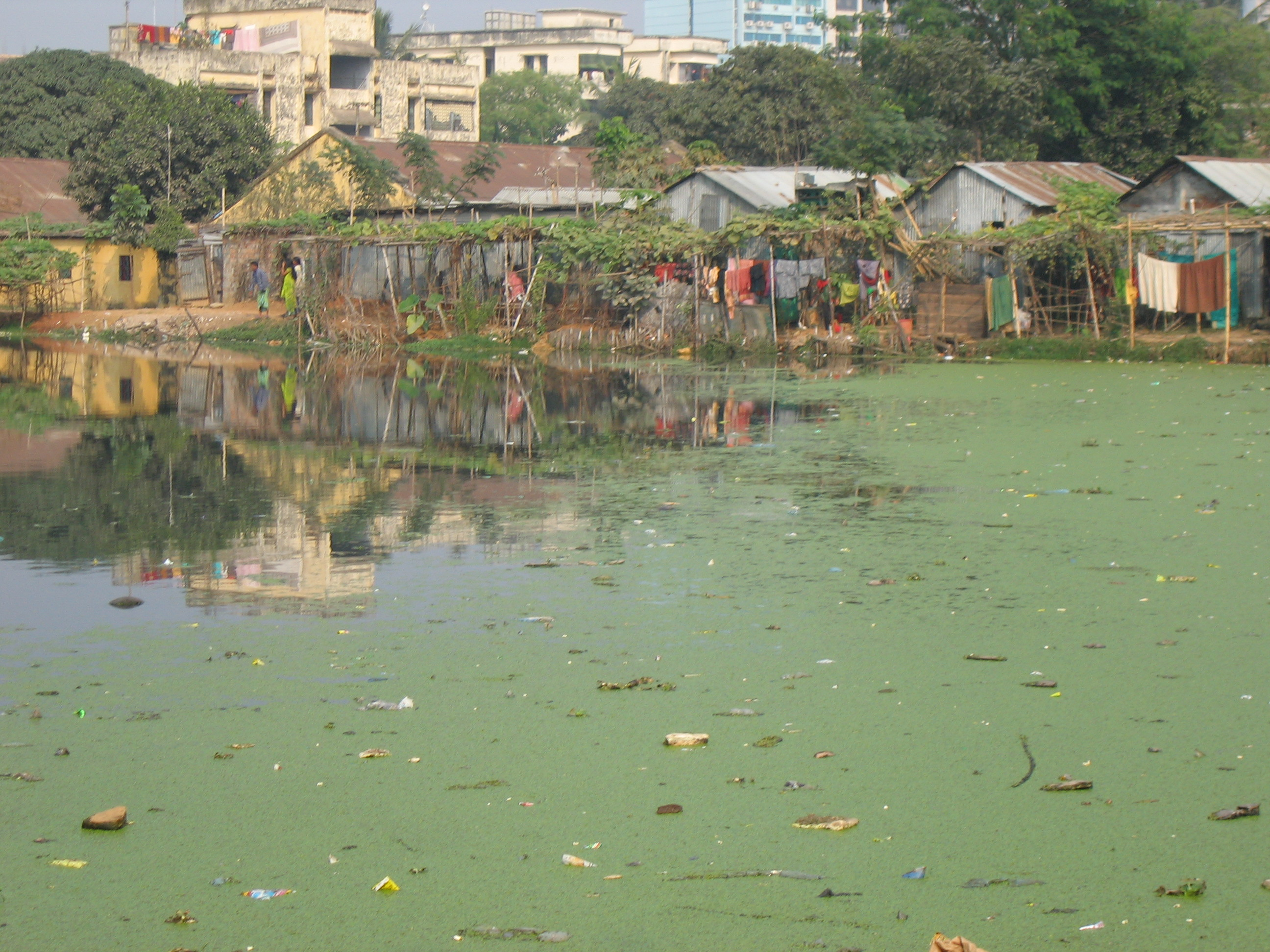 Life at the edge of a pond in one of the core districts of the city of  Dhaka. The photograph illustrates some of the variation in living  conditions and the problems with sanitary conditions that are greatly  exacerbated later in the year with the floods of the monsoon season. Photo by Mercedes Pascual