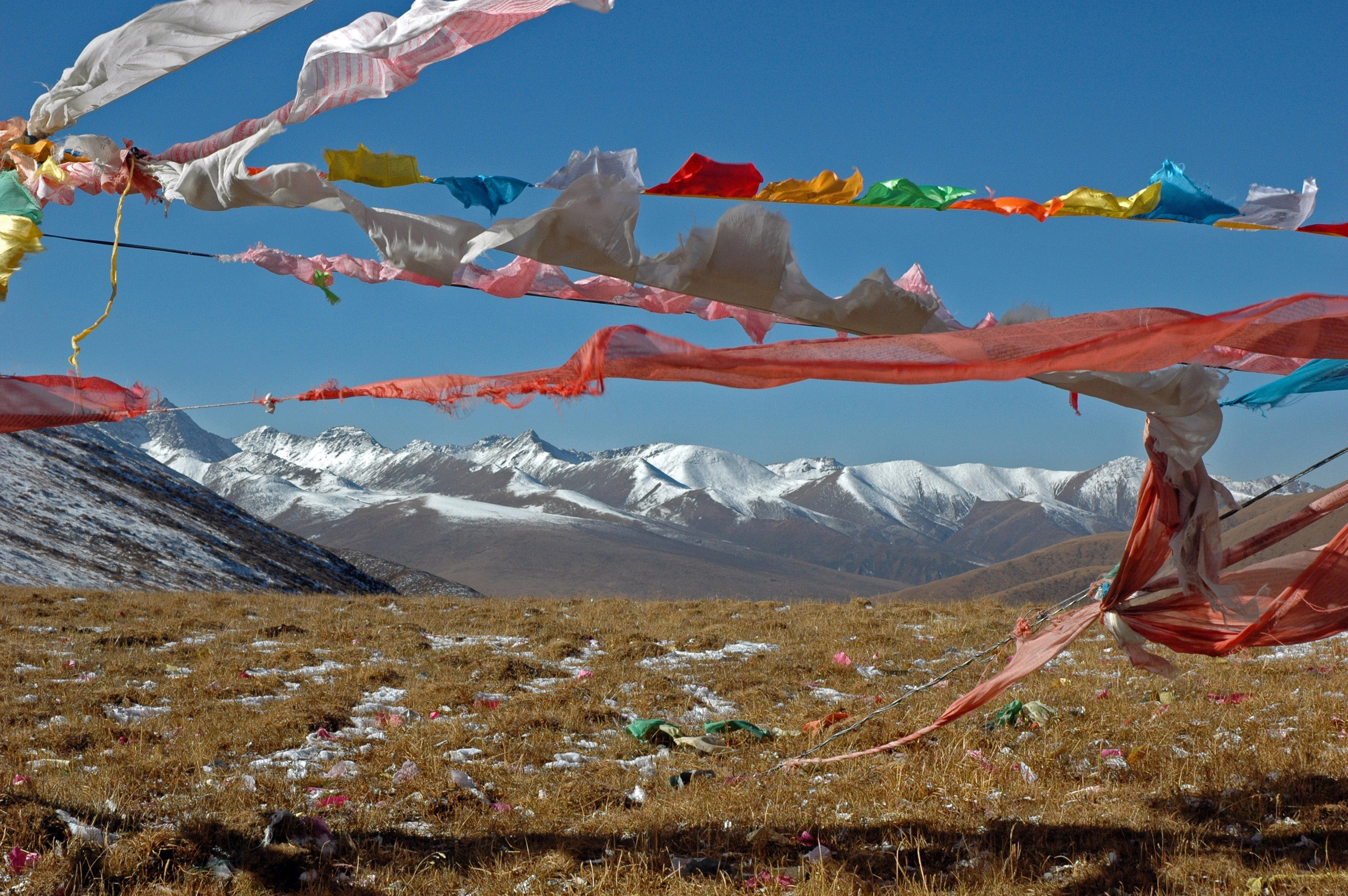 Prayer flags on a high-elevation pass on the Tibetan Plateau. The plateau and the Himalaya Mountains formed as a result of India's collision with Asia over the past 50 million years. Image credit: Marin Clark.