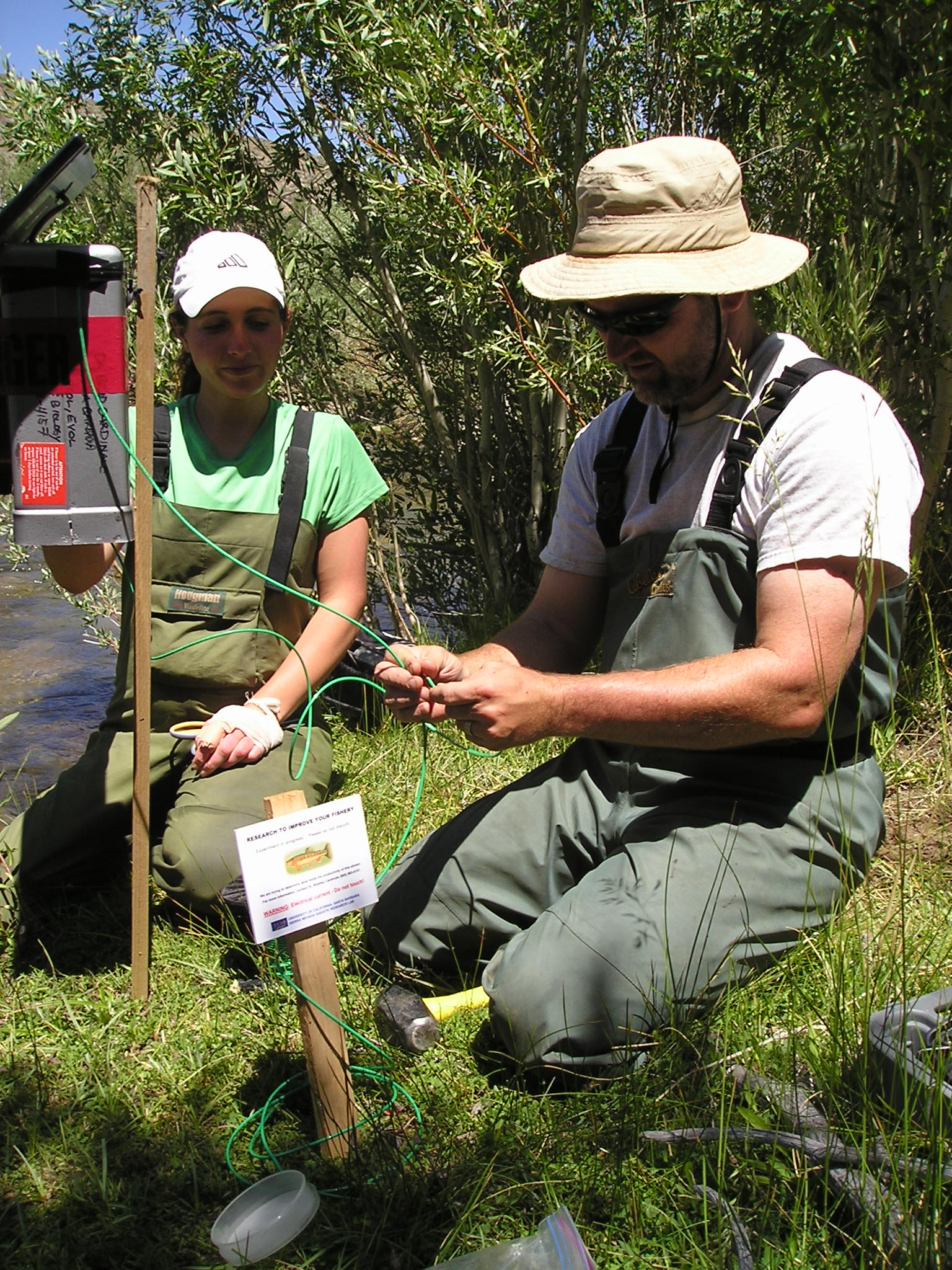 U-M ecologist Bradley Cardinale setting up an electrical fence to simulate extinction of fish in a stream. Image credit: Bradley Cardinale