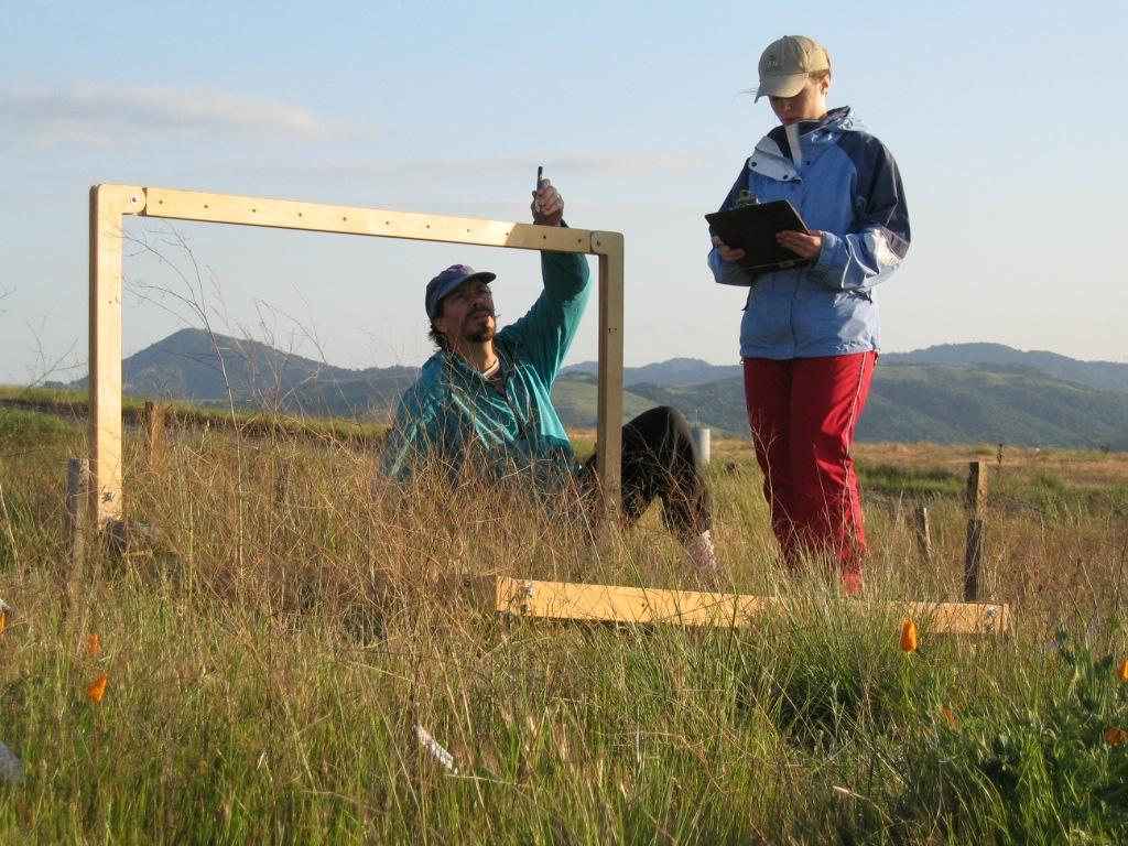 Western Washington University biology professor David Hooper and graduate student Leslie Gonzalez measure plant diversity and productivity in experimental grassland plots in California. Credit: Jeff Dukes