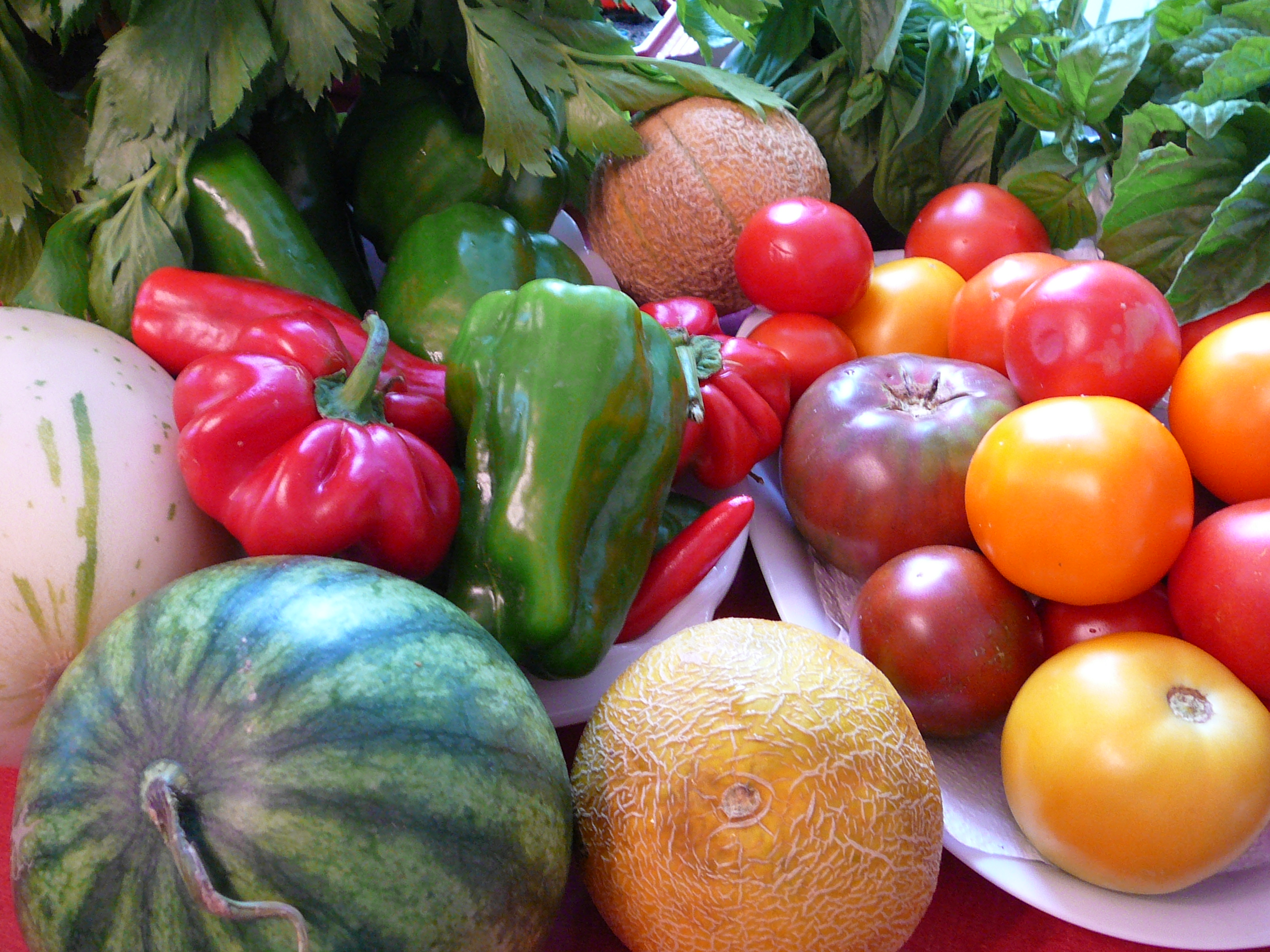 Photo of a variety of Michigan summer fruits and vegetables. Image credit: flickr.com user jpwbee