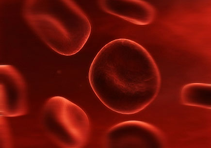 Illustration of streaming red bloodcells. (stock image)