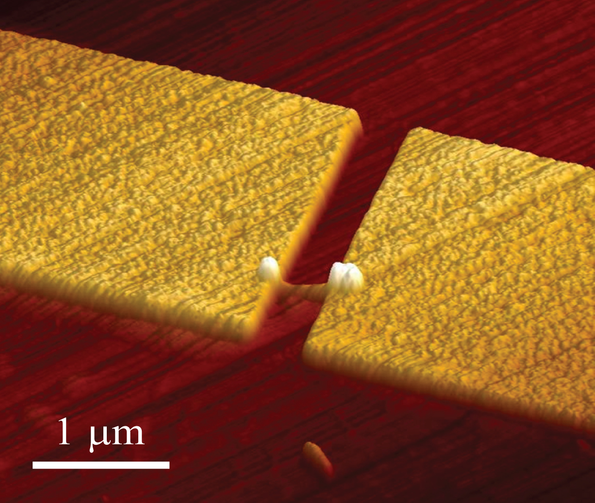 An atomic force microscope image of a nanowire single photon emitter. Courtesy of Pallab Bhattacharya