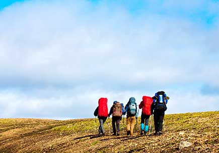 A group of hikers. (stock photo)