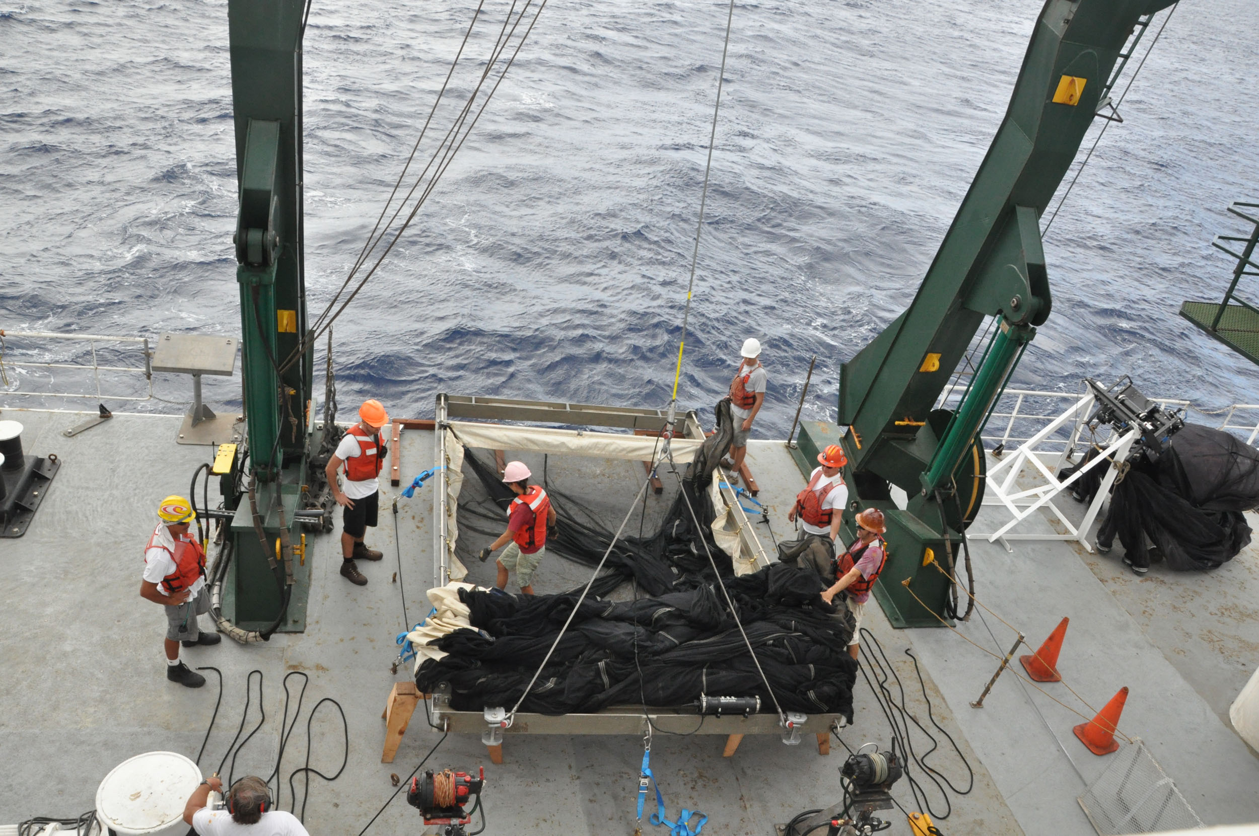 University of Hawaii researchers with a net used to collect nine species of marine fish that feed at different depths in a region near Hawaii called the North Pacific Subtropical Gyre. Image credit: C. Anela Choy