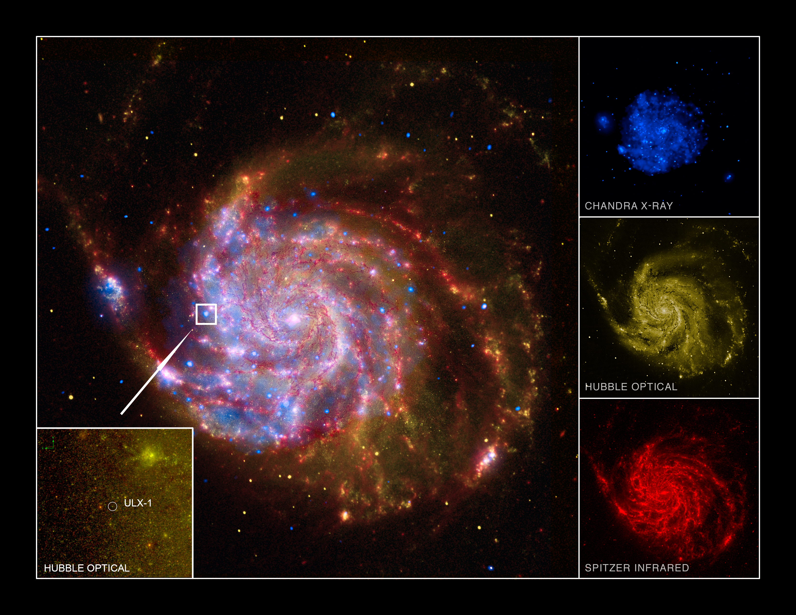 Astronomers have, for the first time, directly measured the mass of a mysterious source of X-ray light in the Pinwheel Galaxy, one of our nearest spiral neighbors. Turns out it's composed of an ultra-bright stellar-mass black hole and an orbiting star. Image credit: Jifeng Liu