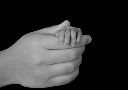 An adult hand holding a baby's had. (stock image)