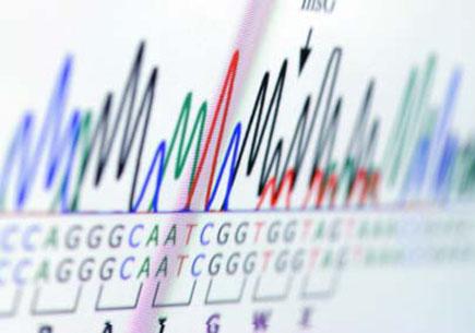 Genetic analysis chart. (stock image)