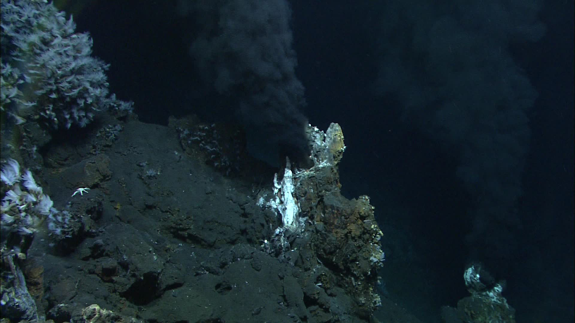 "Two ""black smokers"" vent super-heated, mineral-rich water in the Lau Basin in the western Pacific Ocean. Water samples collected by an unmanned submarine revealed how viruses hijack deep-sea bacteria at hydrothermal vents. Image courtesy of MARUM, University of Bremen and NOAA-Pacific Marine Environmental Laboratory."