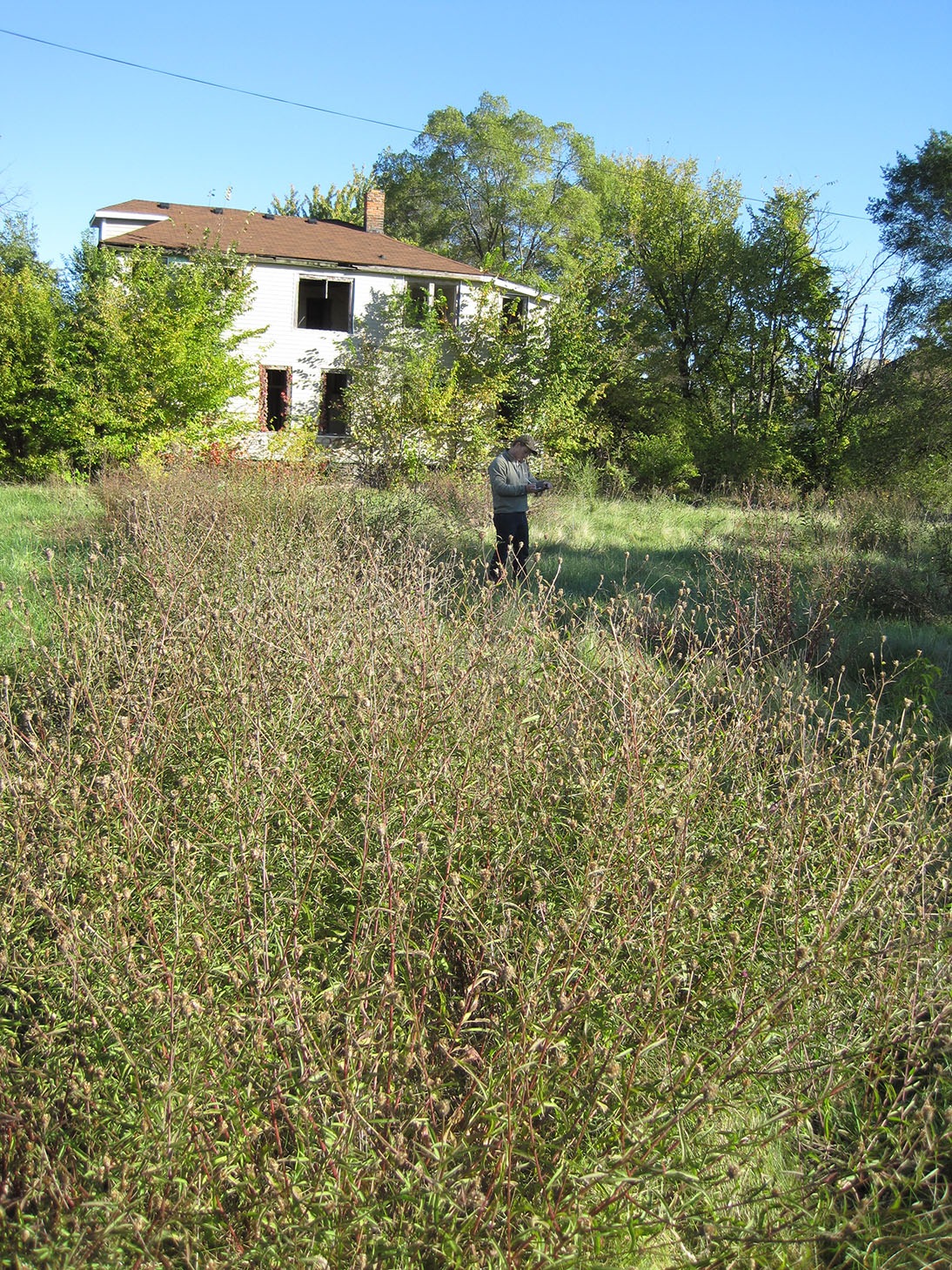 U-M researcher Ben Connor Barrie collecting data about the plants growing on a vacant lot next to an abandoned home in Detroit. Image credit: Daniel Katz