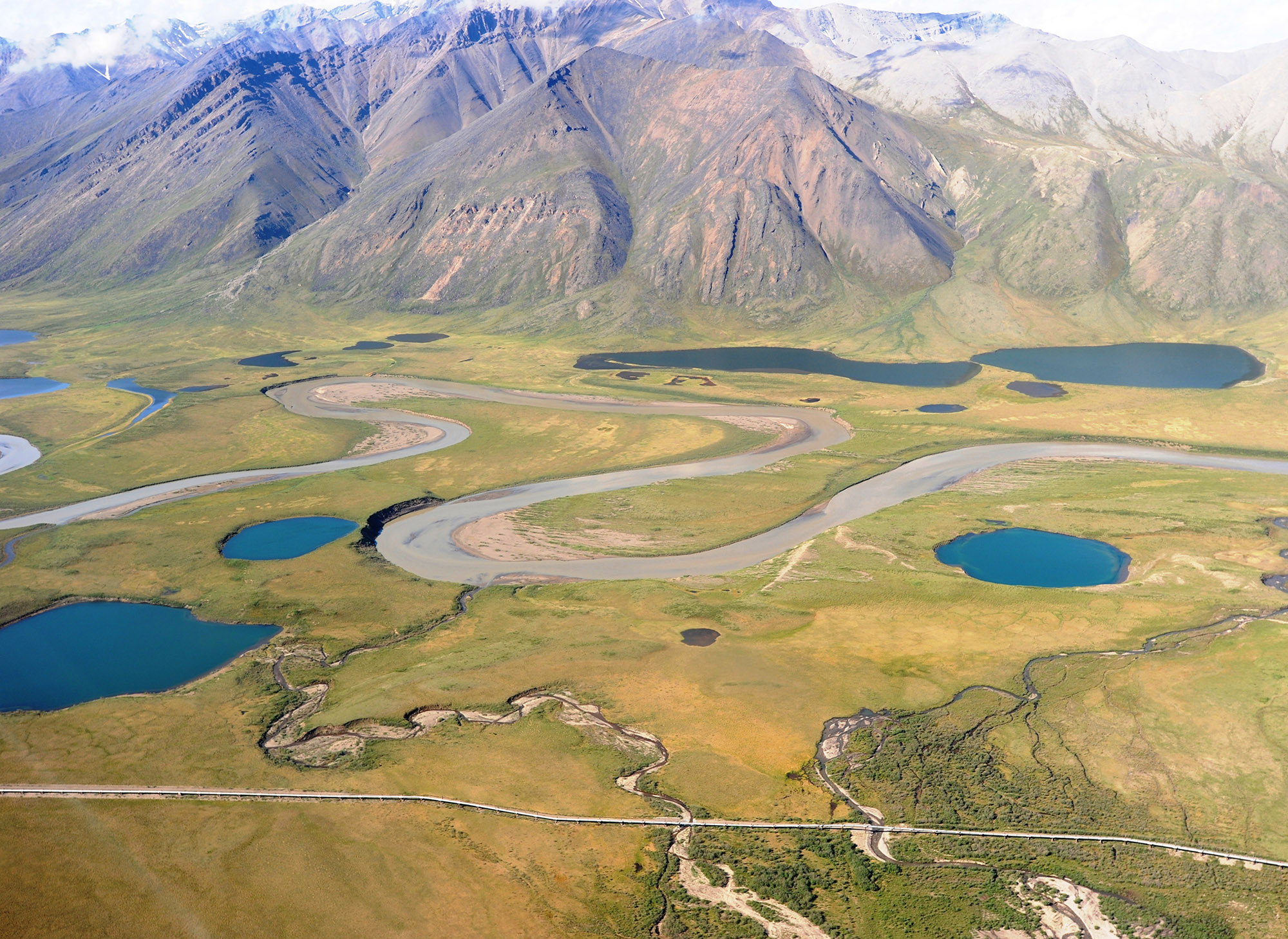 Arctic lakes and Atigun River on Alaska's North Slope. The Dalton Highway and the trans-Alaska pipeline can be seen near the bottom of the image. Image credit: George W. Kling