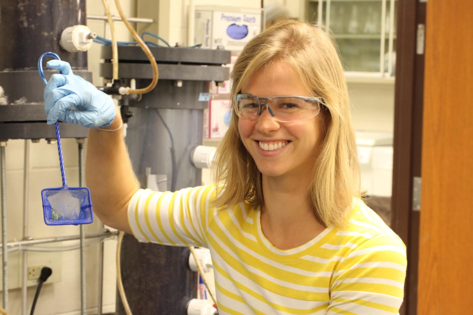 "University of Michigan graduate student Lizzie Grobbel holding a young shrimp in a net. Image credit: Clive ""Clegg"" Waldron"