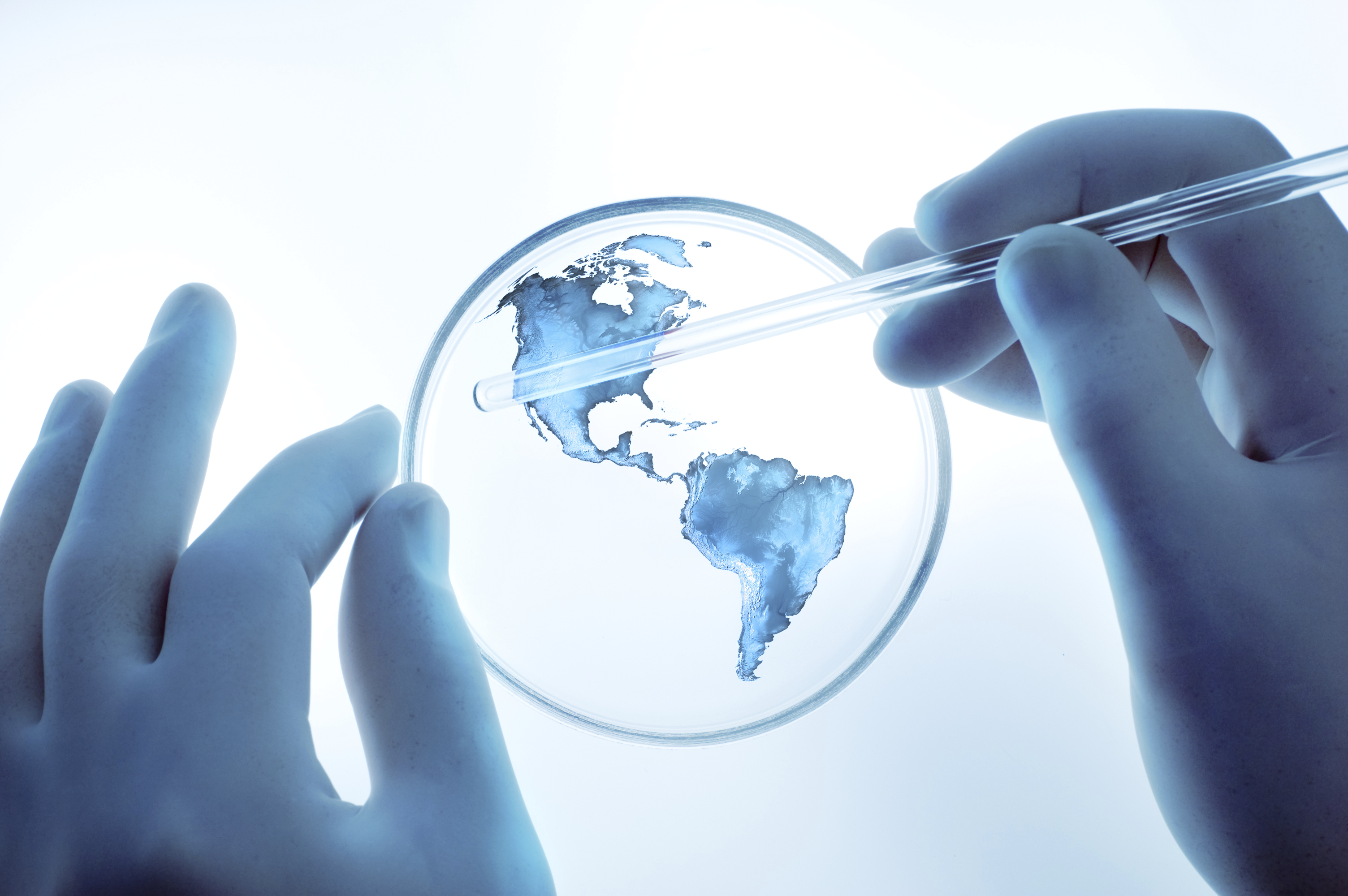 Concept photo of gloved hands examining Earth's continents in a petri dish. (stock image)