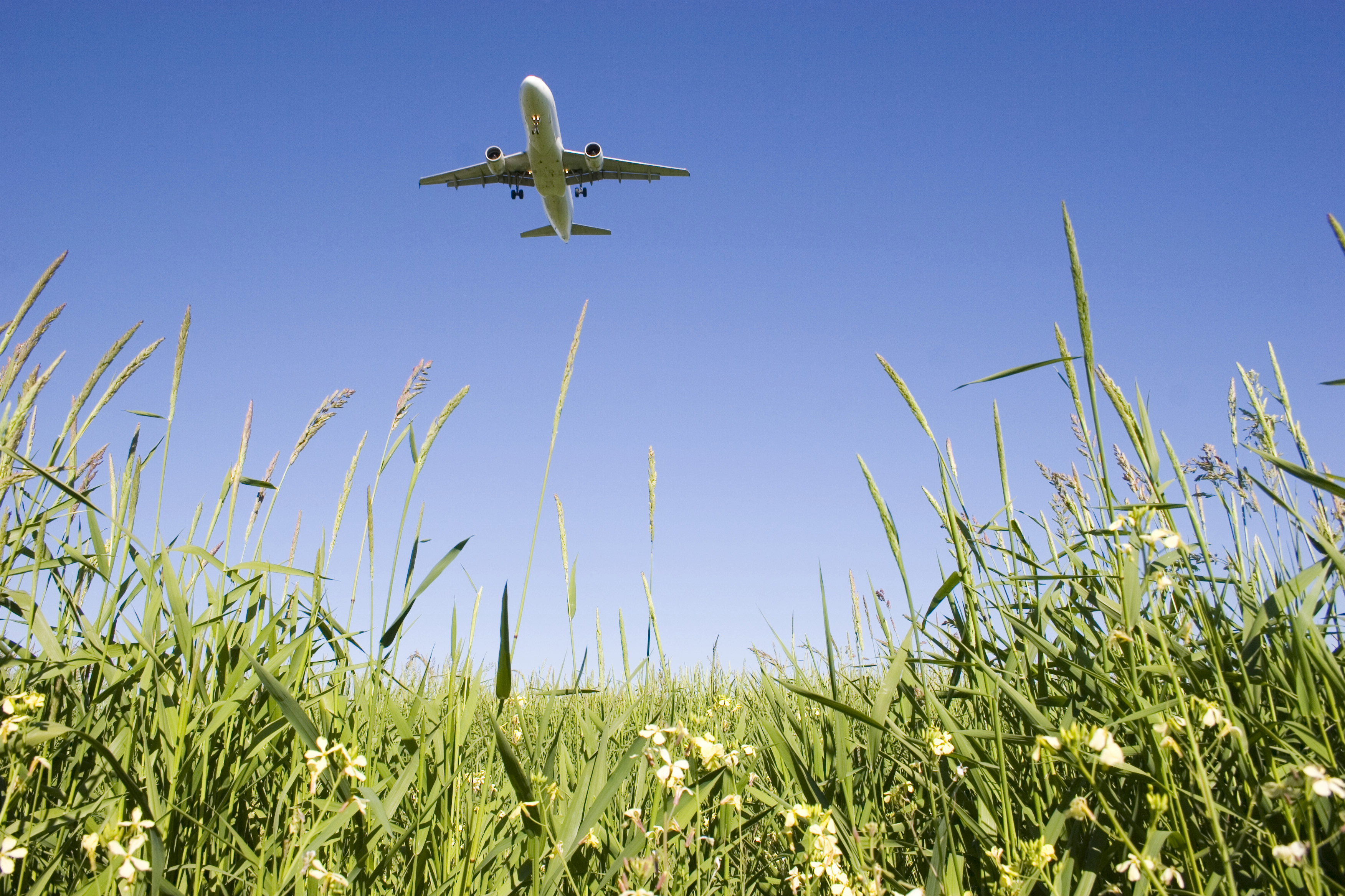 An airplane flying over a grassy field. (stock image)