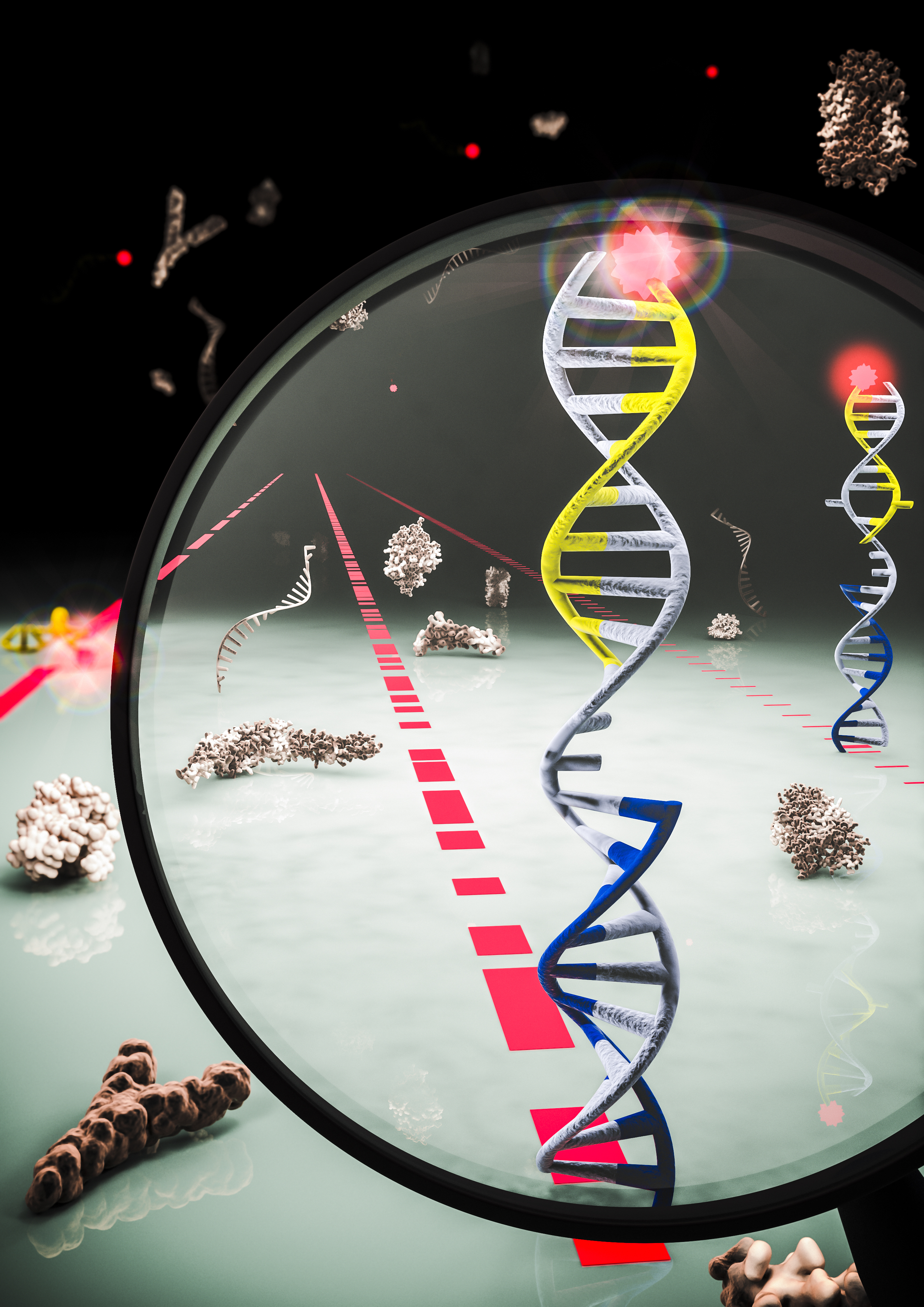 मिशिगन विश्वविद्यालय के शोधकर्ताओं ने उन्हें कुशलता से रक्त में आनुवांशिक जानकारी बुलाया microRNAs के टुकड़े की पहचान करने की अनुमति देता है कि एक तकनीक विकसित की है। अग्रिम एक तरह से करने के लिए एक दिन का नेतृत्व एक साधारण रक्त परीक्षण के साथ एक बार कैंसर के कई प्रकारों के लिए स्कैन करने के लिए कर सकता है। इस उदाहरण में, लाल, नीले और काले रंग की किस्में, नई तकनीक में, देते हैं और छवि में ग्रे है जो डीएनए, करने के लिए अलग अलग है कि microRNAs प्रतिनिधित्व करते हैं। एक शाही सेना देता है और पलक की विशेष पैटर्न माइक्रो RNA जुड़ी है, जो शोधकर्ताओं बताता है जब डीएनए फ्लोरोसेंट चमकता है। छवि क्रेडिट: MolGraphics