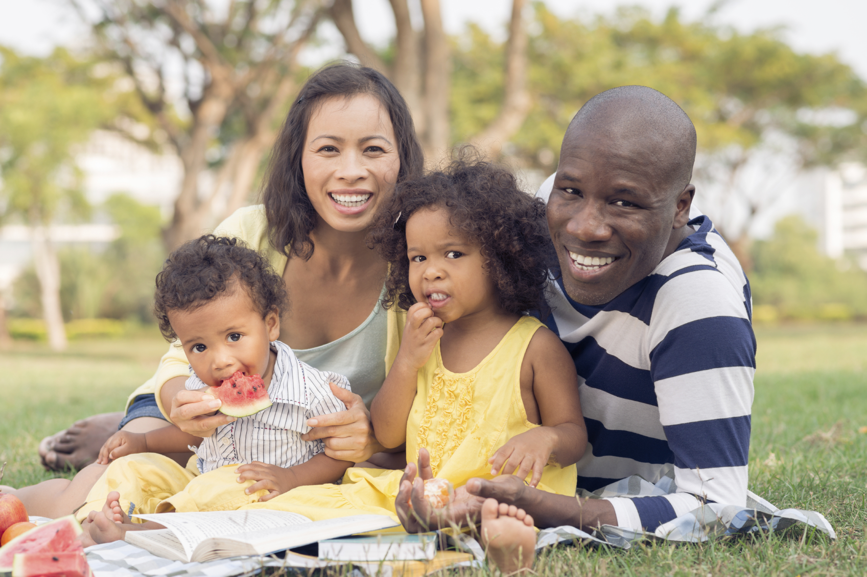 A family of four at a picnic. (stock image)
