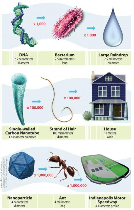 Infographic comparing the width of DNA, raindrops and several other familiar objects.