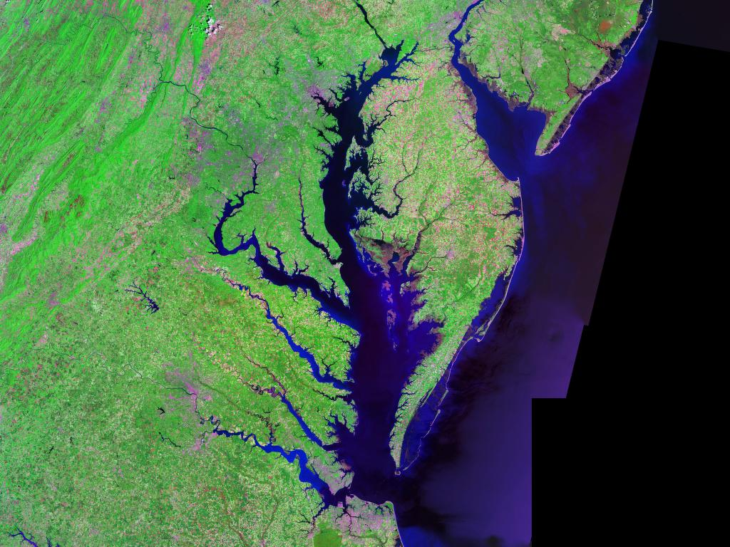 Satellite (Landsat) picture of Chesapeake Bay (center) and Delaware Bay (upper right) - and Atlantic coast of the central-eastern United States. Image credit: Landsat/NASA, via Wikimedia Commons