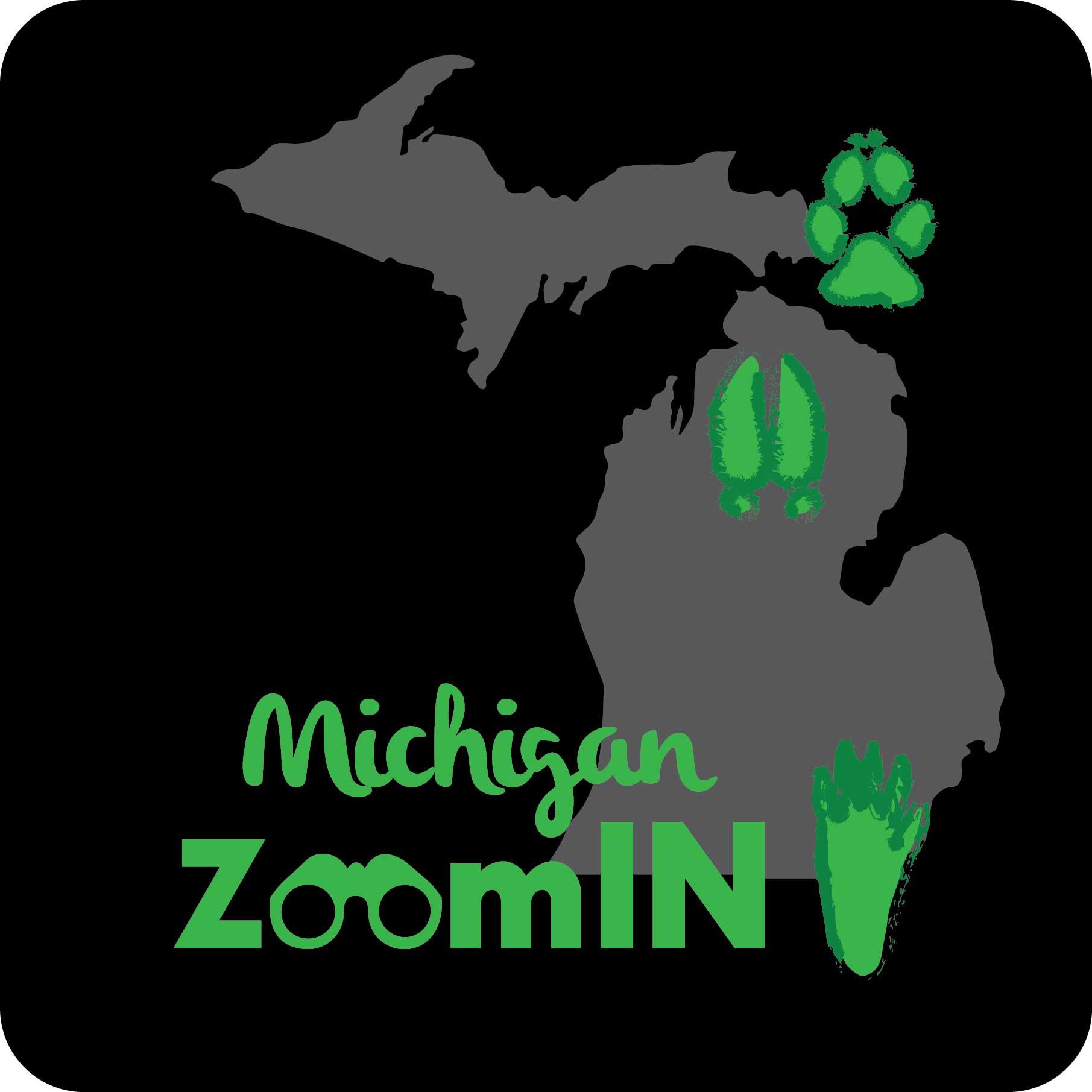Michigan ZoomIN logo