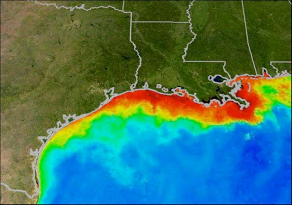 An oxygen-starved hypoxic zone, commonly called a dead zone and shown in red, forms each summer in the Gulf of Mexico. Fish and shellfish either leave the oxygen-depleted waters or die, resulting in losses to commercial and sports fisheries. Credit: NOAA