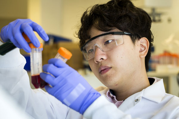 Eric Lin prepares to run blood samples through the labyrinth chip, which can isolate cancer cells effectively without relying on expectations of what proteins will be on their surfaces. Photo: Joseph Xu, Michigan Engineering Communications & Marketing.