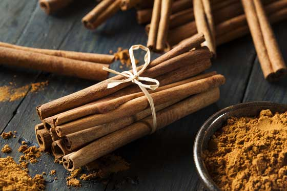 Cinnamon sticks tied in a bundle. (stock image)