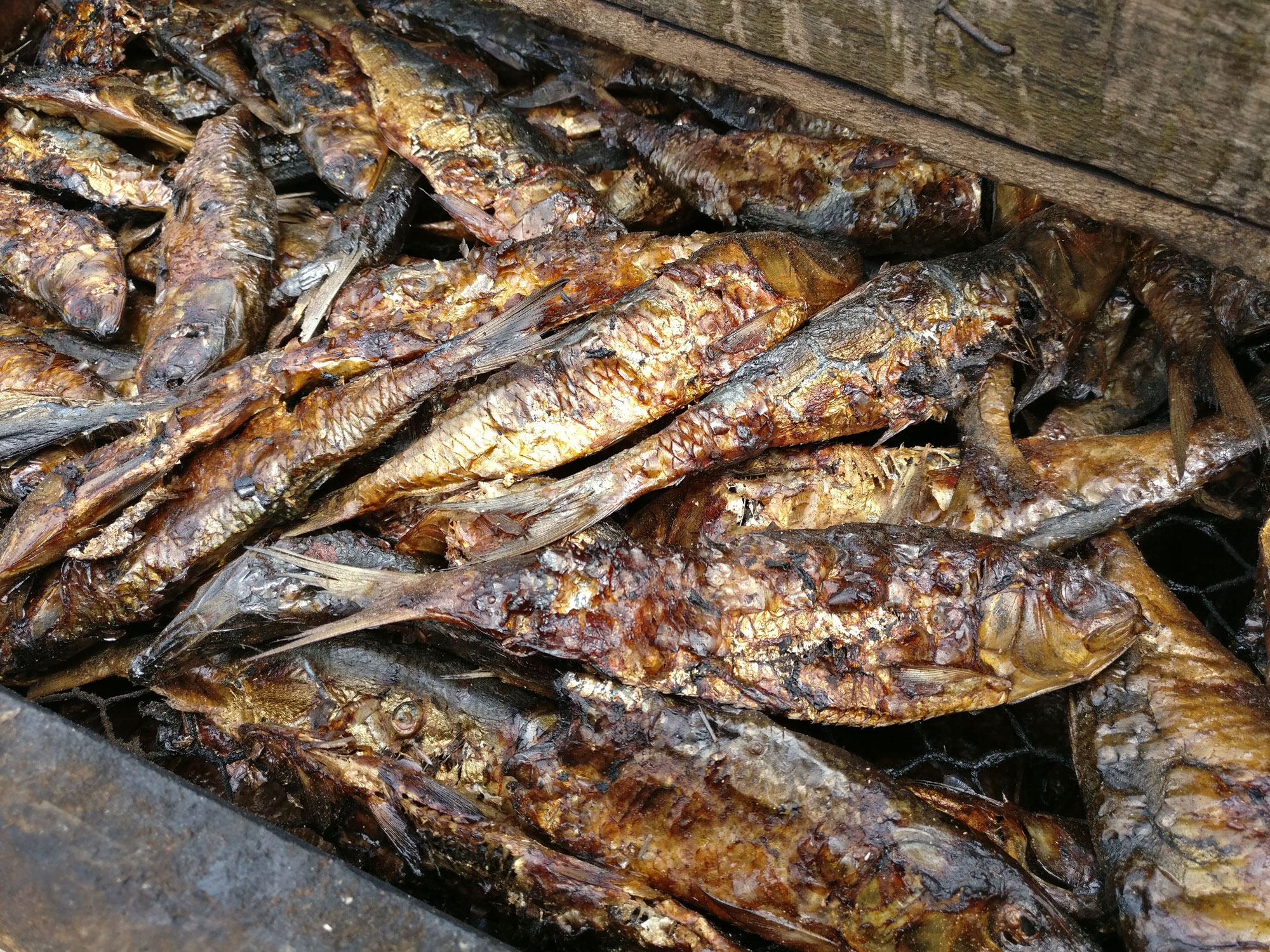 Smoked Fish in Ghana. Image credit: Mandira Banerjee