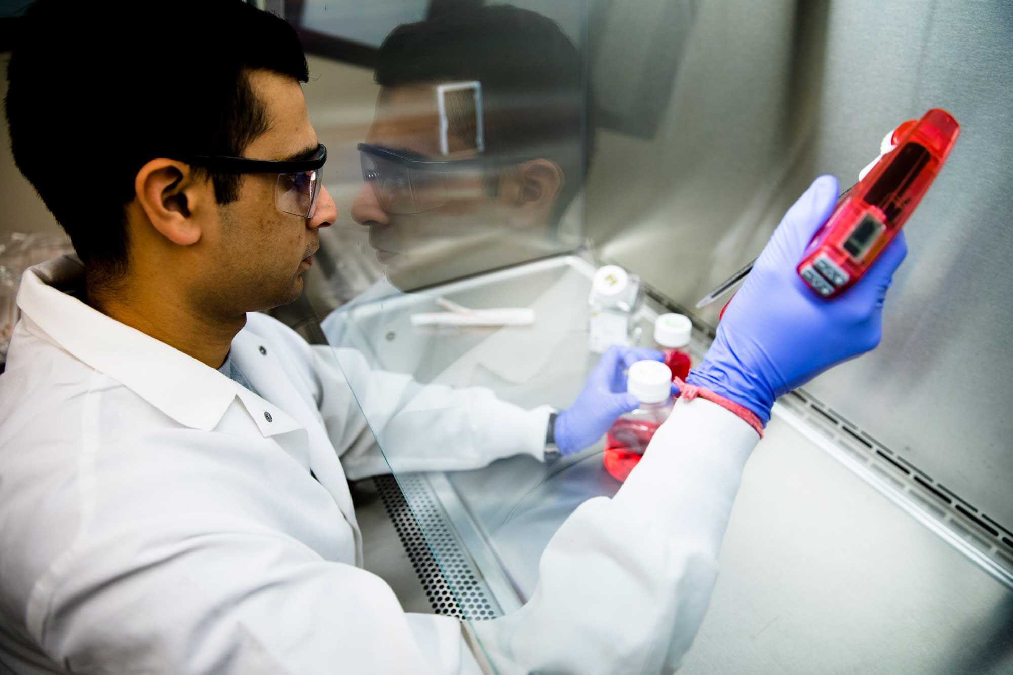 Sumit Bhatnagar, a PhD student in chemical engineering, maintains samples of cancerous cells for use in the development of a pill that could help screen for breast cancer. Tumors are targeted by a molecule that carries a fluorescent imaging agent in order to make earlier and more accurate breast cancer diagnoses. Image credit: Evan Dougherty, Michigan Engineering