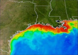 An oxygen-starved hypoxic zone, commonly called a dead zone and shown in red, forms each summer in the Gulf of Mexico. Fish and shellfish either leave the oxygen-depleted waters or die, resulting in losses to commercial and sports fisheries. Image credit: NOAA