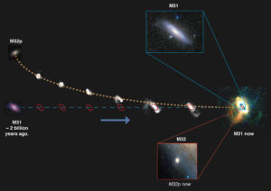 The process through which the Andromeda galaxy sheds the M32p galaxy