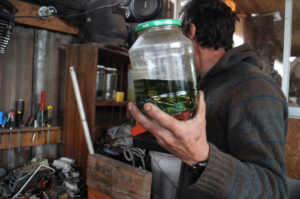 An e-waste worker holds up a printed circuit board that's been put in an acid bath for dismantling in Chile.