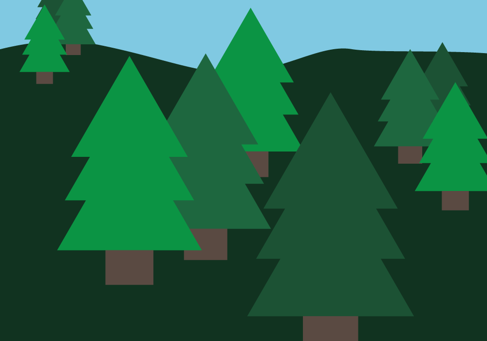 Illustration of a forest. Illustration credit: Kaitlyn Beukema