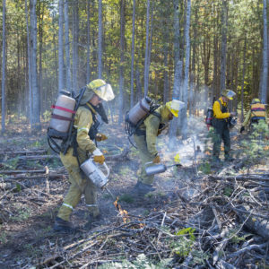 "The U-M Biological Station hired a fire crew from PlantWise LLC in Ann Arbor to conduct the prescribed burn, which added a new ""burn plot,"" the sixth in a series of experimentally manipulated forest plots started in 1936."