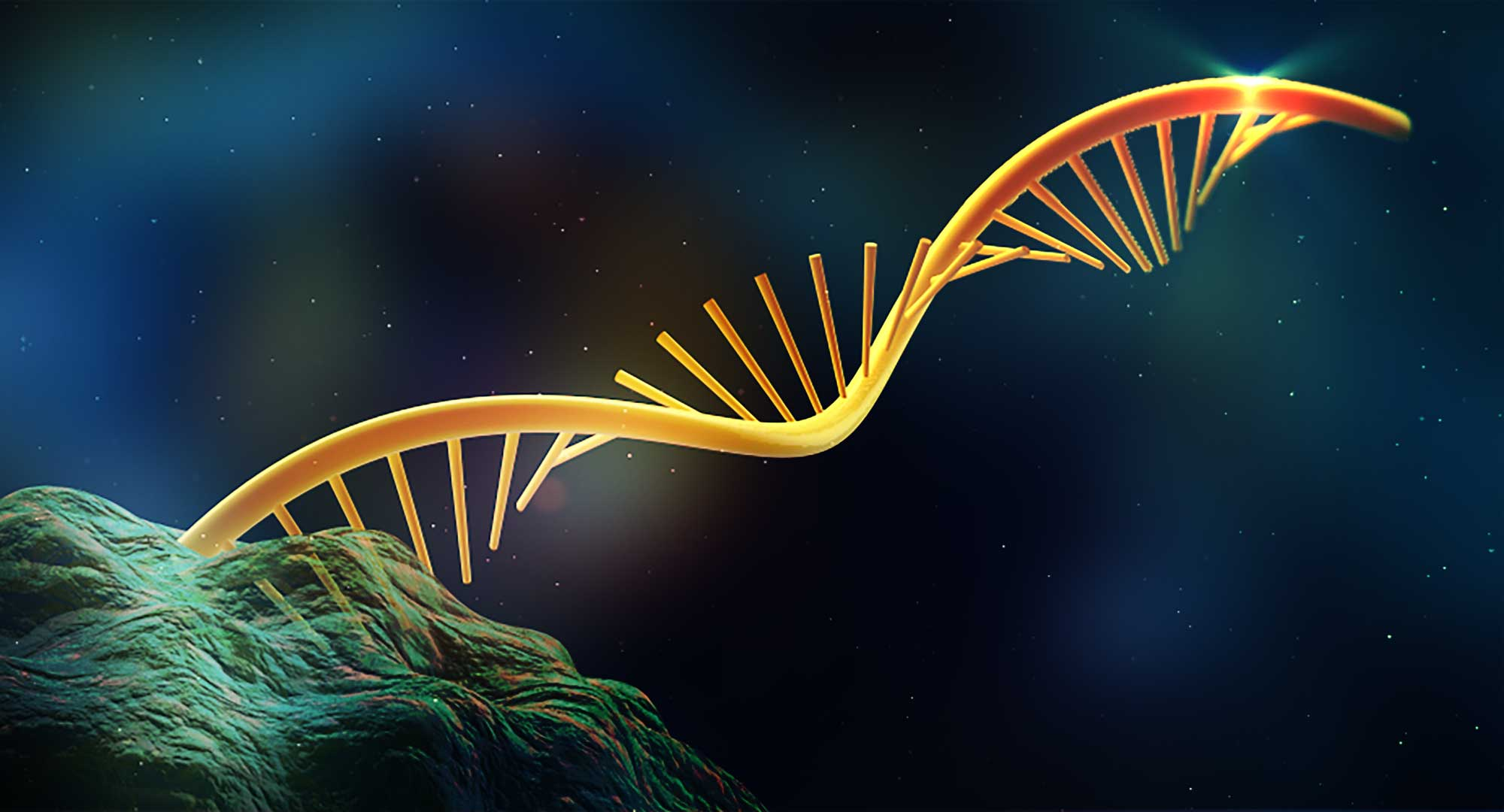 Artists rendering of an RNA structure. Image courtesy: Nils Walter