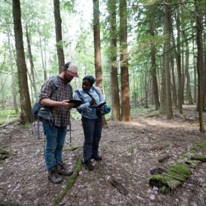 Harris and Kuntze checking map coordinates while hiking through the forest to install cameras as part of the largest-ever camera-trap study of Michigan wildlife.