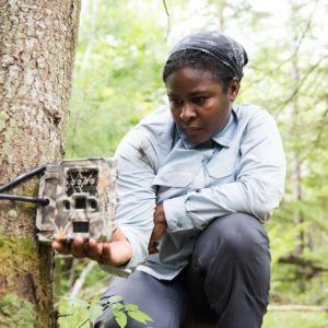 "U-M wildlife ecologist Nyeema Harris completes the installation of a ""camera trap"" at the U-M Biological Station."