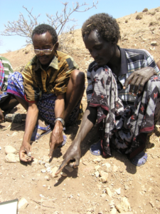 Discoverers of the GWM67 locality and major hominin fossils (2005). Asa Hamad Humet (left), Ali Ma'anda Datto (right). Image credit: Scott Simpson, CWRU School of Medicine.