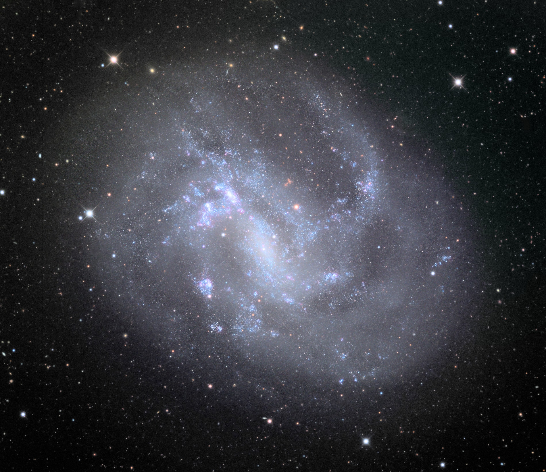 NGC 4395 is imaged with the Schulman Telescope at Mount Lemmon Observatory. Image credit: Adam Block/Mount Lemmon SkyCenter/University of Arizona