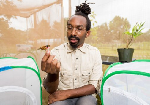 U-M biologist D. André Green holds a monarch butterfly in an outdoor insectary at the university's Matthaei Botanical Gardens. Green studies monarch migration and the internal timer that tells the butterflies it's time to wake from winter dormancy and prepare for their springtime journey northward. Photo by Daryl Marshke/Michigan Photography.