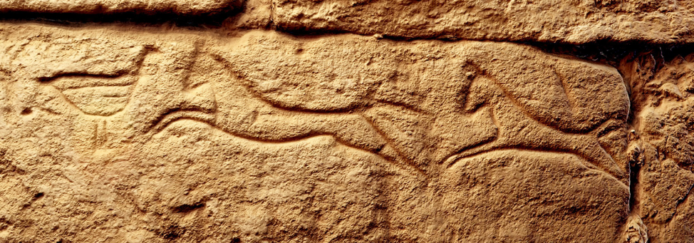 Graffito of two horses and a bird. Image courtesy the International Kurru Archaeological Project, 2016.