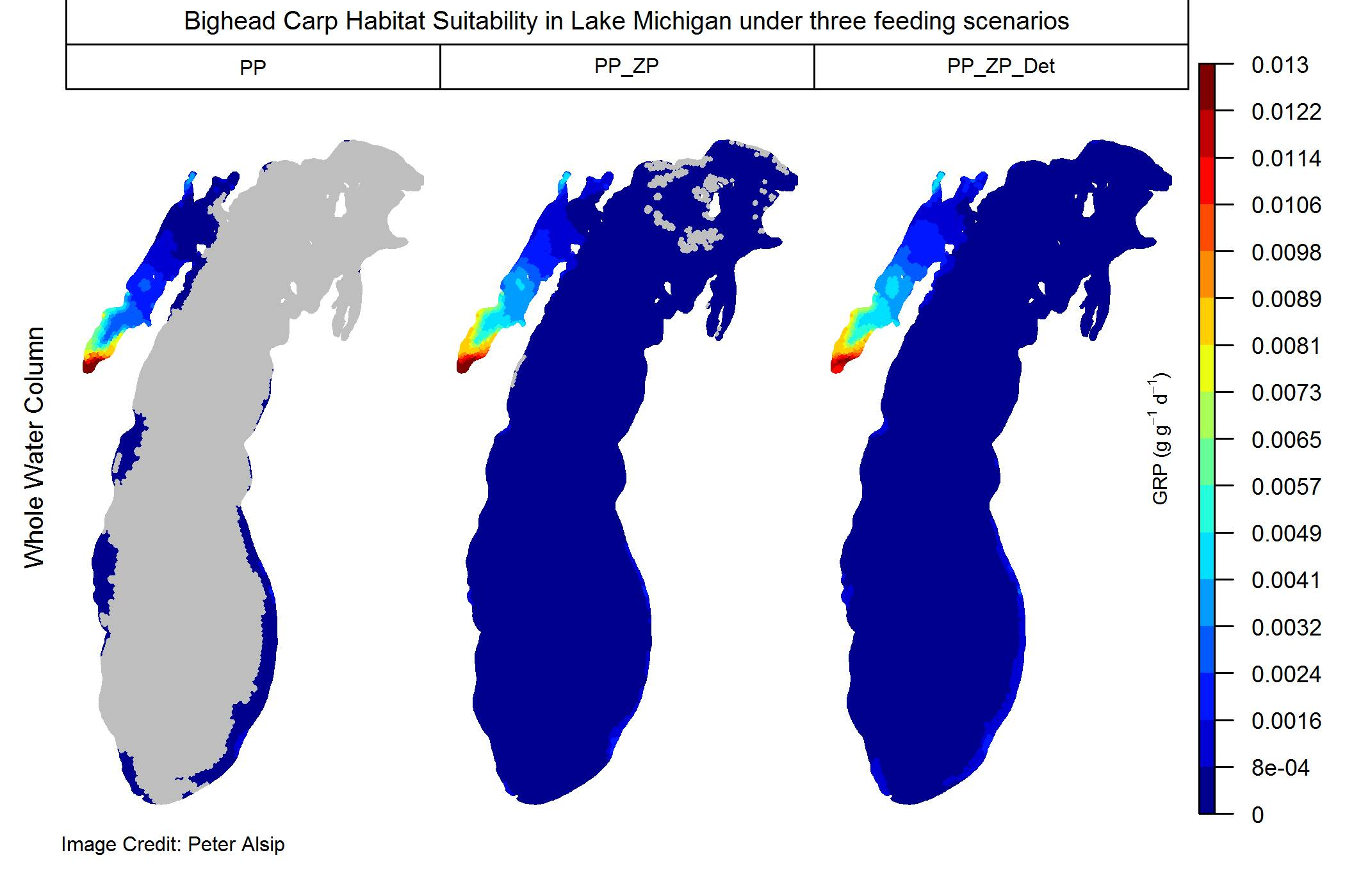 Habitat suitability maps for bighead carp in Lake Michigan under three feeding scenarios. The University of Michigan-led modeling study shows that when bighead carp are allowed to feed throughout the water column on the broadest possible diet (phytoplankton, PP, zooplankton, ZP, and detritus, Det), the entire extent of Lake Michigan contains suitable bighead carp habitat somewhere in the water column, at certain times of year.