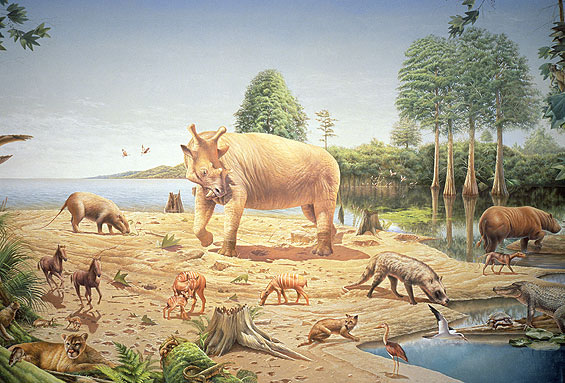 During the Eocene Epoch, alligator relatives swam in the swamps on Ellesmere Island and mammals climbed in the dawn redwood trees. Image credit: Bob Hynes, Smithsonian Institution