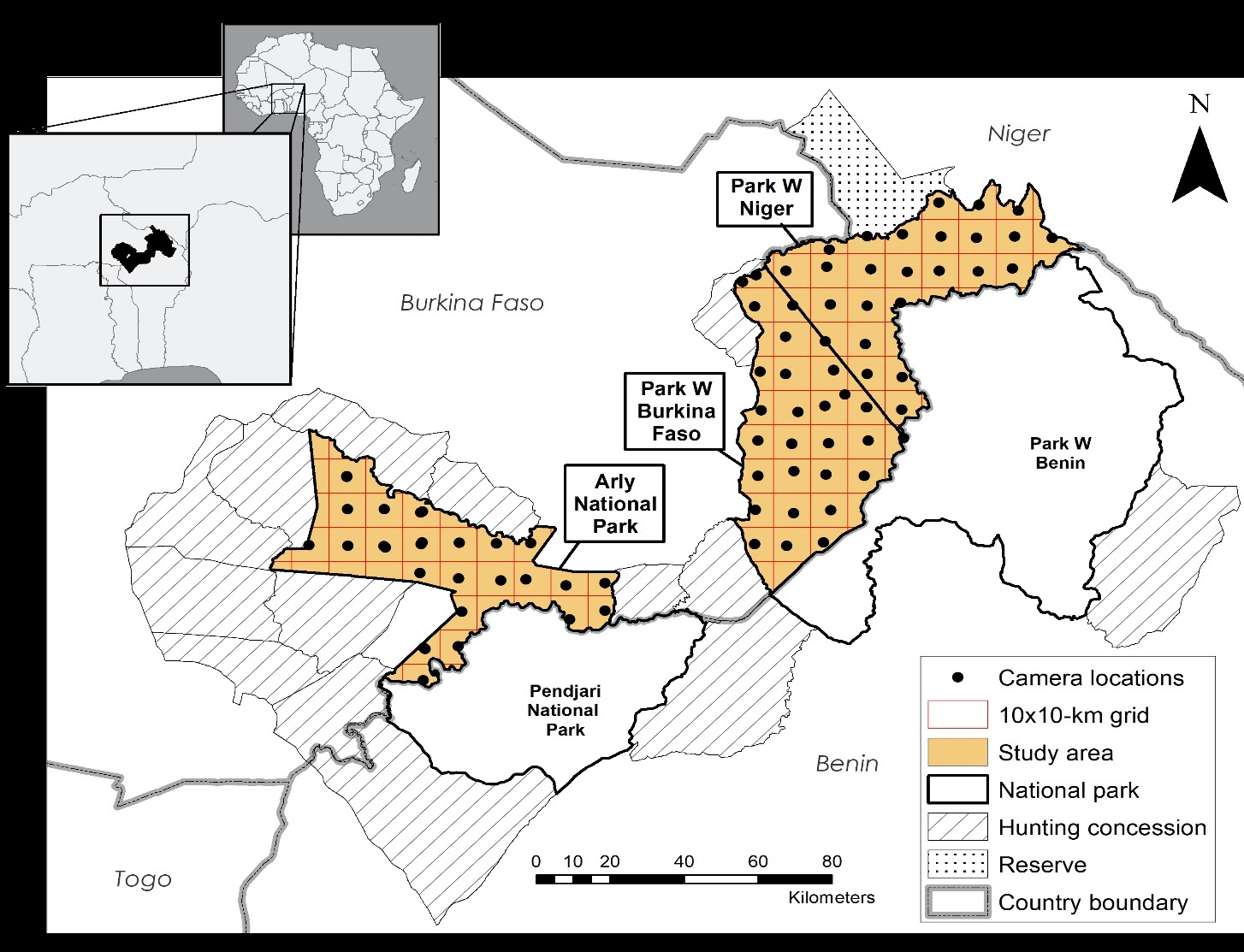 Map showing the location of a University of Michigan-led camera survey of West African wildlife in three national parks: Arly National Park, Park W Niger and Park W Burkina Faso. The parks are part of the largest protected-area complex in West Africa, the W-Arly-Pendjari, or WAP. Image credit: U-M Applied Wildlife Ecology Lab