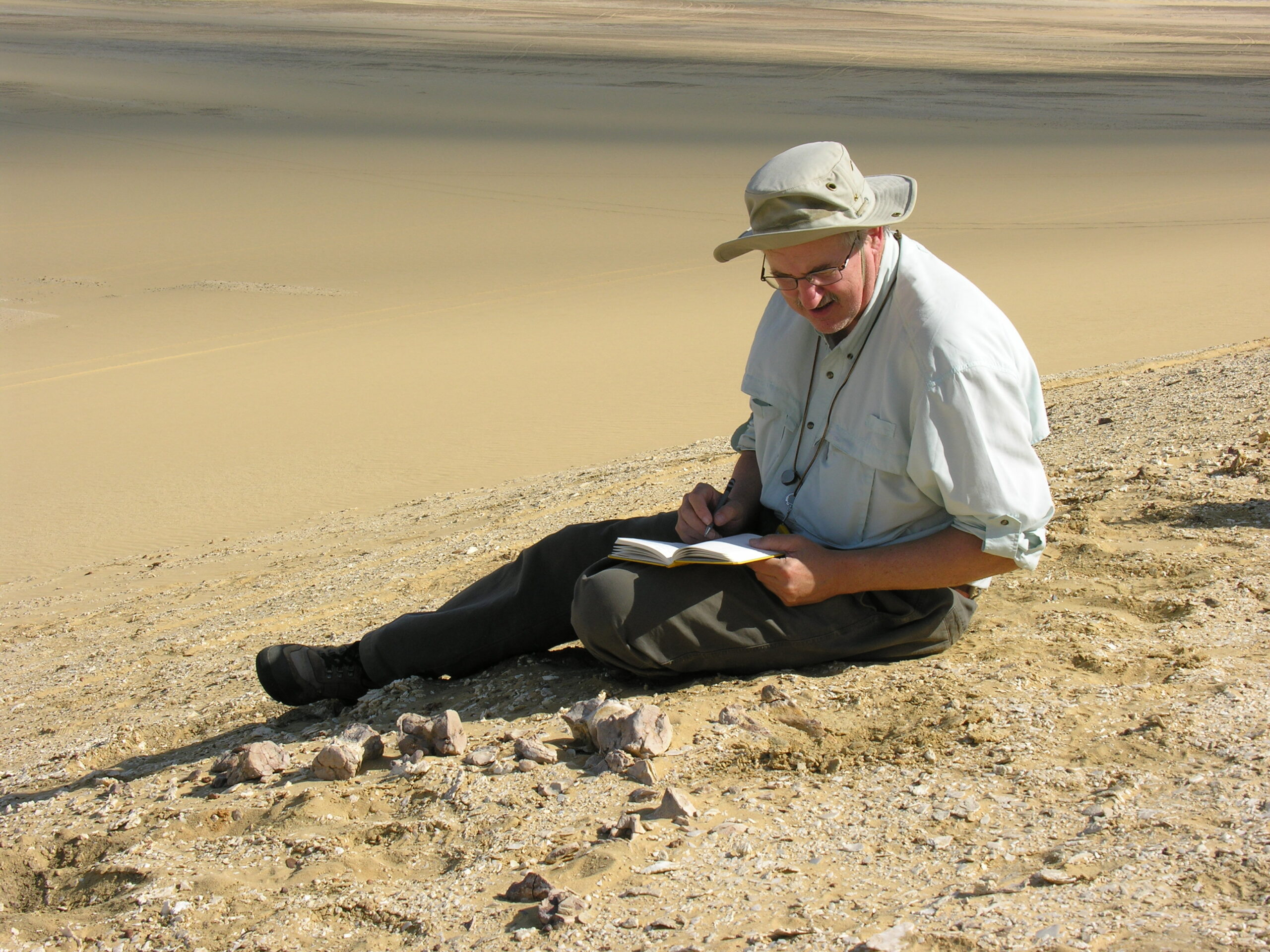 U-M paleontologist Philip Gingerich recording information at the Aegicetus site in 2007 before the excavation started. The site is within the Wadi Al Hitan World Heritage Site in the Western Desert of Egypt. Image courtesy: Philip Gingerich