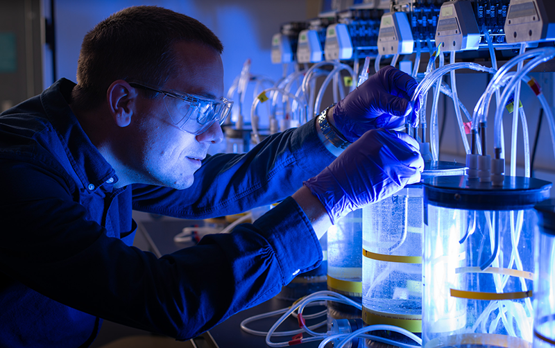 A researcher examines scientific aparatus. Image courtesy: U-M Office of Research