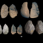 Two opposing views of Acheulian stone tools from DAN5. Image credit: Dr. Michael J. Rogers, Southern Connecticut State University