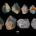 Two opposing views of Oldowan stone tools from DAN5. Image credit: Dr. Michael J. Rogers, Southern Connecticut State University