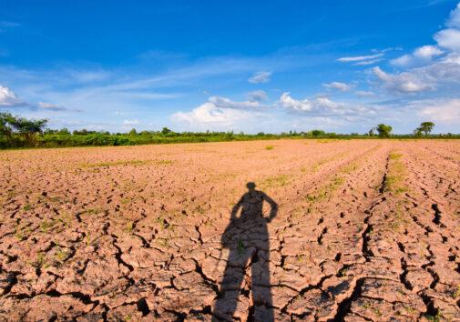 Arid climate. Image credit: iStock